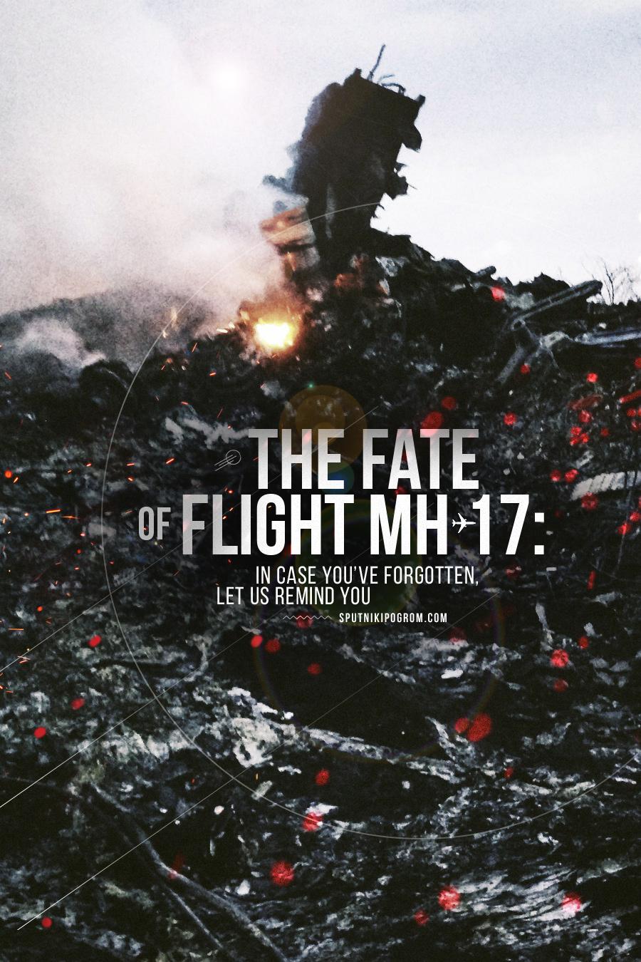 mh17-month-EN
