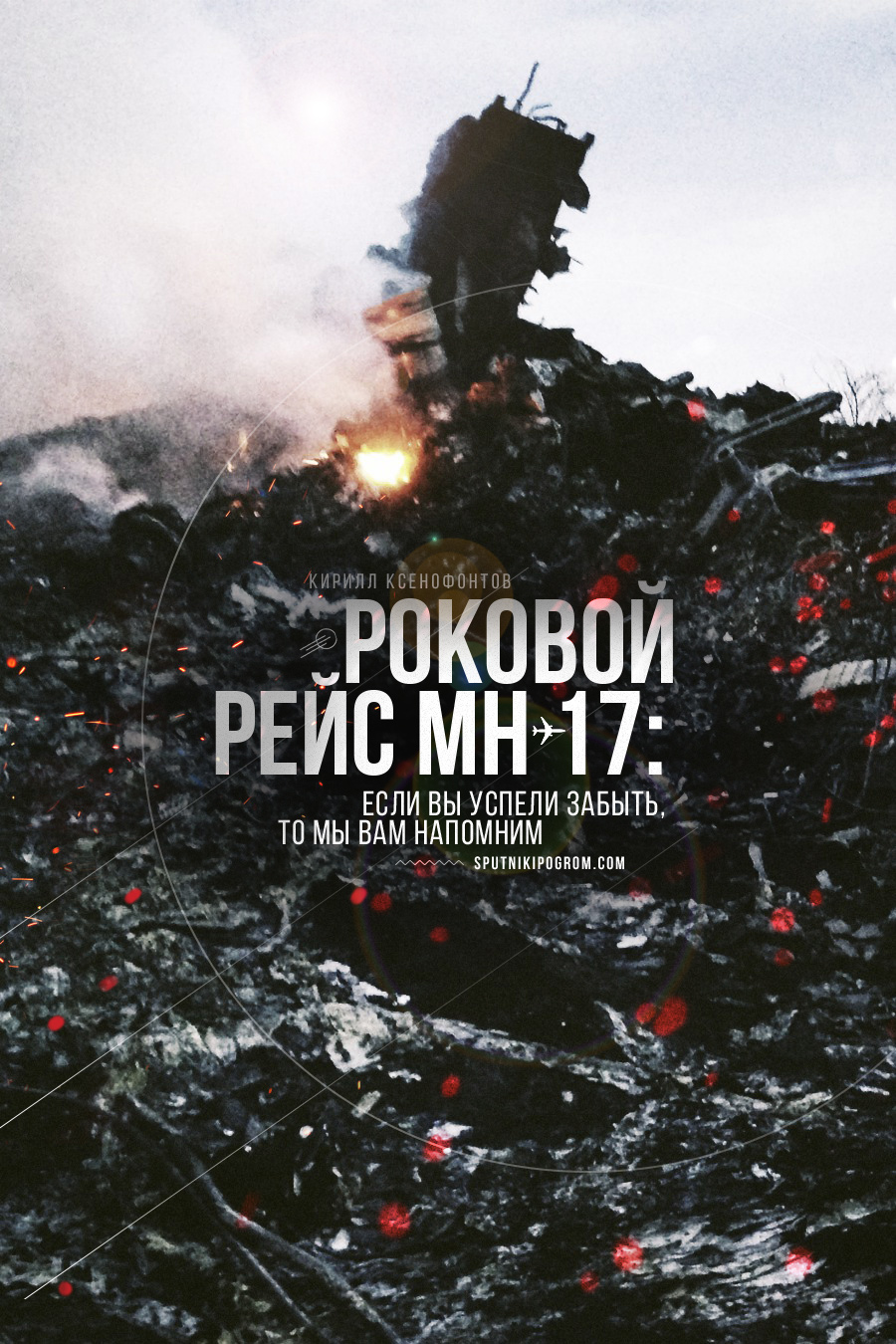 mh17-month